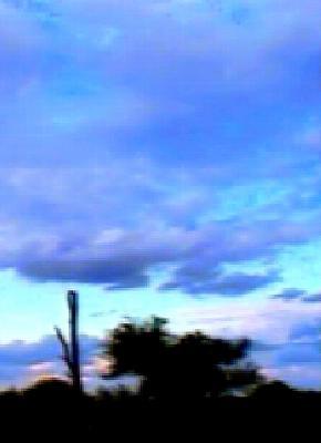 20070425213738-azulisal11.jpg