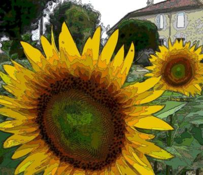 20090127185537-beaulieu-contours.jpg