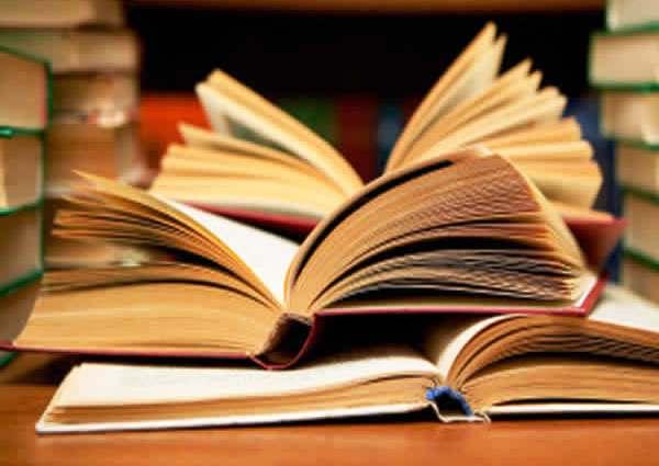 20130121094523-38230-libros-de-viajes.jpg